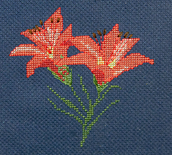 Mountain Lillies - Woodlilly - FO052