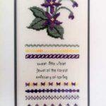 GHO48 Violet Sampler