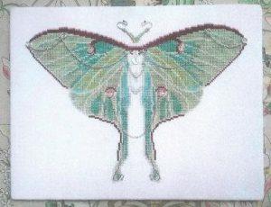 GHO90 Luna Moth