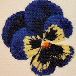 GHO120 Blue Pansy